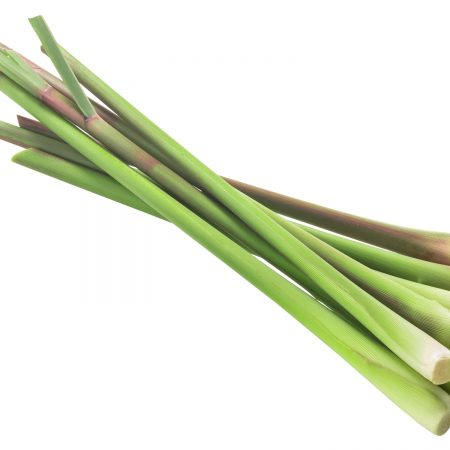 Pile of cut Lemongrass stems (Cymbopogon citratus) isolated